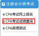 CPA成绩查询