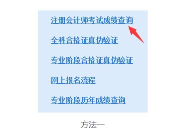 青海2017年注册会计师考试成绩查询时间