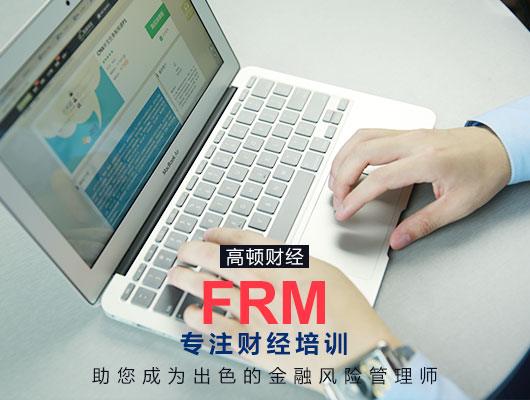 FRM一级