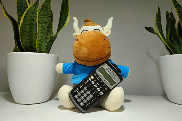 会计专业能考税务师吗